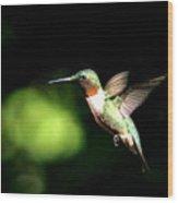 Img_0284-006 - Ruby-throated Hummingbird Wood Print
