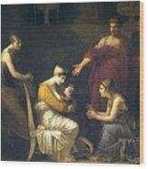 img088 Pierre-Paul Prudhon Wood Print