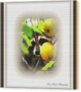 Img_0899-005-ttp Wood Print