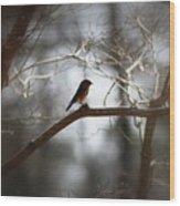 Img_2287 - Eastern Bluebird Wood Print
