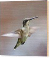 Img_3085 - Ruby-throated Hummingbird Wood Print