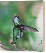 Img_4595-004 - Ruby-throated Hummingbird Wood Print