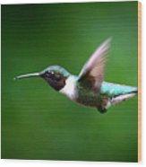 Img_7668-003 - Ruby-throated Hummingbird Wood Print