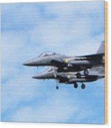 Img_9906 - Jet Wood Print