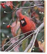 Img_9971-023 - Northern Cardinal Wood Print