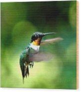 Img_9985-001 - Ruby-throated Hummingbird Wood Print