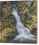 Imp Trail Cascade Wood Print
