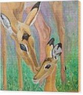Impala Doe And Fawn Wood Print
