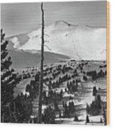 Imperial Bowl And Peak 8 At Breckenridge Resort Colorado Wood Print by Brendan Reals