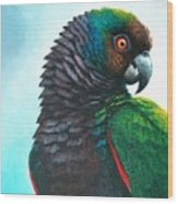 Imperial Parrot Wood Print