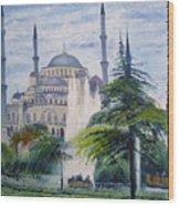 Imperial Sultanahmet Mosque Istanbul Turkey 2006  Wood Print