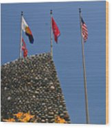 Imposing Flags Wood Print