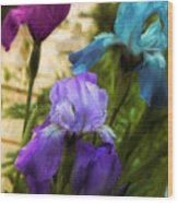 Impossible Irises Wood Print