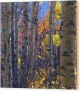 Impression Of Fall Aspens Wood Print