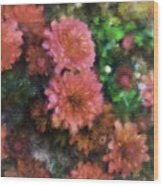 Bronze And Pink Mums Wood Print