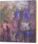 Impressionist Purple And White Irises 6647 Idp_2 Wood Print