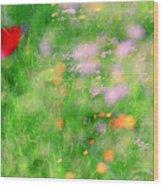 Impressionistic Blossom 5 At Britain Park Wood Print