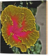 Impressionistic Hibiscus Yellow And Red  Wood Print