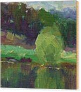Impressionistic Oil Landscape Lake Painting Wood Print