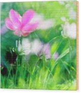 Impressionistic Photography At Meggido 3 Wood Print
