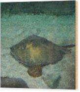 Impressionistic Sting Ray - 003 Wood Print