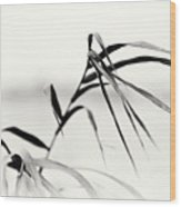 Impressions Monochromatic Wood Print