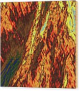 Impressions Of A Burning Forest 11 Wood Print
