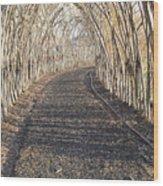 In A Haystack Wood Print