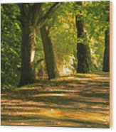 In A Row Wood Print