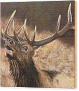 In A Rut Wood Print