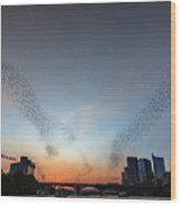 In Austin Streams Of Mexican Freetailed Bats The Worlds Largest Urban Bat Colony Take To The Skies During Sunset Wood Print
