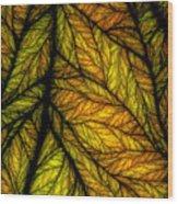 In Autmn's Sunset Wood Print