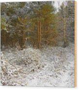 in December Wood Print