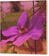 In Full Blue Blossom  Wood Print