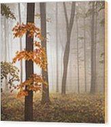 In November Light Wood Print
