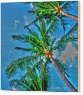 In Palms View Wood Print