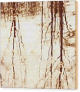 In Reflection Wood Print