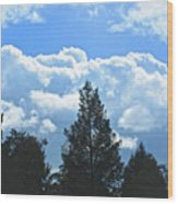 In The Anteroom Of The Mountain Gods 004 Wood Print