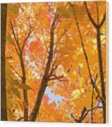 In The Autumn Mood  Wood Print