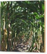 In The Corn  Wood Print
