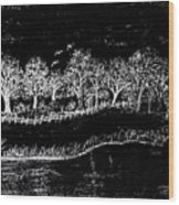 In The Dark Of The Night Wood Print