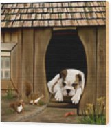 In The Dog House Wood Print