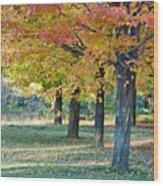 In The Fall Wood Print