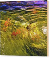 In The Flow 2 Wood Print