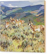 In The Foothills - Antelope Wood Print