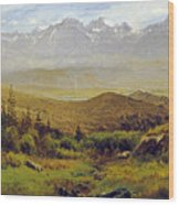 In The Foothills Of The Rockies Wood Print