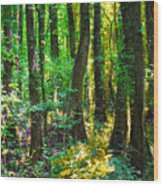 In The Forest Wood Print