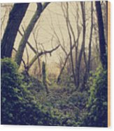 In The Forest Of Dreams Wood Print
