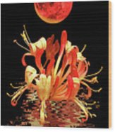In The Heat Of The Night 2 Honeysuckle Red Moon Wood Print