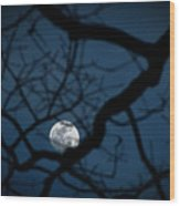 In The Light Of Night Wood Print